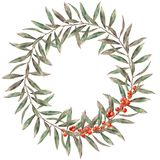 Akwareli jesieni elegancki wianek Ręka malował kwiecistą gałąź z liśćmi, czerwone jagody odizolowywać na białym backgroun ilustracji