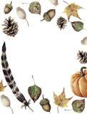 Akwareli jesieni granica Wręcza malujący sosna rożek, acorn, jagoda, spadków liście, piórko i bania, koloru żółtego i zieleni, ilustracja wektor