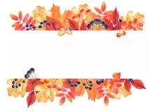 Akwareli jesieni sztandar z kolorowymi liśćmi i jagodami ilustracji