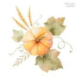 Akwareli jesieni wektorowy bukiet liście, gałąź i banie odizolowywający na białym tle, royalty ilustracja