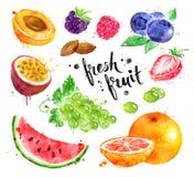 Akwareli kolorowy ilustracyjny ustawiający świeża owoc Zdjęcia Royalty Free