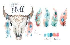 Akwareli krowy artystyczna czaszka i piórko Zachodni ssaki Boho modnisia boho dekoraci druku jeleni poroże Kwiaty royalty ilustracja