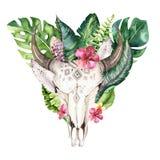 Akwareli krowy artystyczna czaszka i zwrotników palmowi liście Zachodni jeleni ssaki Tropikalni jeleni boho dekoraci druku poroże ilustracji
