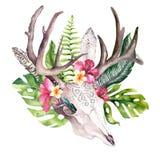 Akwareli krowy artystyczna czaszka i zwrotników palmowi liście Zachodni jeleni ssaki Tropikalni jeleni boho dekoraci druku poroże royalty ilustracja