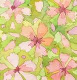 Akwareli kwiat malujący tło Fotografia Royalty Free