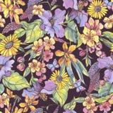 Akwareli kwiecistego kolorowego lata bezszwowy wzór, wildflowers royalty ilustracja