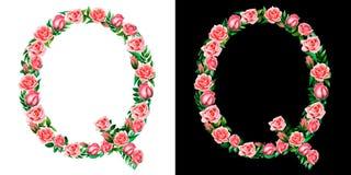 Akwareli kwiecisty abecadło róże, monogram, kapitałowy list Q odizolowywający na czarny i biały tle obraz royalty free