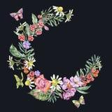 Akwareli lata wianek z Chamomile, jagody, Wildflowers ilustracja wektor