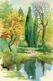 Akwareli lata wiejska krajobrazowa wektorowa ilustracja Fotografia Royalty Free