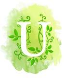 Akwareli listowa kaligrafia na akwareli tle Naturalni elementy opuszczają kędzioru projektowi element typograficzny dla sieć plak Fotografia Stock