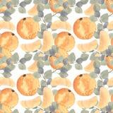 Akwareli mandarine pomarańcze owoc z liścia bezszwowym wzorem ilustracja wektor