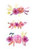 Akwareli menchii delikatni kwiaty i liście Fotografia Royalty Free
