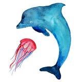 Akwareli morza i delfinu mieszkanowie, odizolowywający na białym tle ilustracji