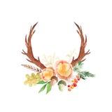 Akwareli nieociosany ustawiający kwiaty i liście Zdjęcia Royalty Free