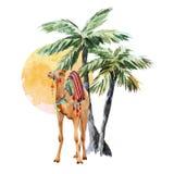 Akwareli palmy i wielbłąda wektoru skład ilustracja wektor