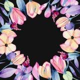 Akwareli pastelowy jabłczany okwitnięcie kwitnie wokoło ramy ilustracja wektor
