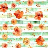 Akwareli pełni lata pomarańcze kwitnie bezszwowego wzór z lampasami na białym tle, rumianek, St John ` s wort, nasturcja Obraz Stock
