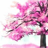 Akwareli piękny purpurowy drzewo Ręka rysująca różowa ilustracja dla karty, pocztówka, pokrywa, zaproszenie, tkanina ilustracja wektor