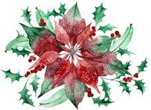 Akwareli poinsecja z Bo?enarodzeniowym kwiecistym wystrojem Ręki malować tradycyjne rośliny i kwiat ilustracji