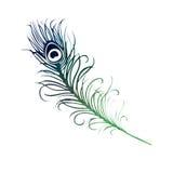 Akwareli Ptasiego piórka błękitnej zieleni purpur ilustracja Obrazy Royalty Free