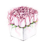 Akwareli róże w pakunku Obrazy Stock