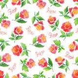 Akwareli róży wzór Fotografia Stock