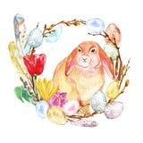 Akwareli ręka malował Wielkanocnego królika i wianek z barwionymi jajkami, gałązki, gałąź, krokusów kwiaty odizolowywający Wielka royalty ilustracja