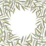 Akwareli rama gałąź z zielonymi liśćmi obraz stock