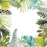 Akwareli rama kolorowi tropikalni liście Dla zaproszeń, kartek z pozdrowieniami i tapet, ilustracja wektor
