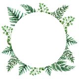 Akwareli rama z tropikalnymi li??mi i houseplants li??mi greenfield sukulent projekta elementu kwiecisty ilustraci wektor Doskona ilustracja wektor