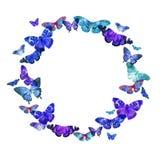 Akwareli rama z wizerunkiem przejrzyści motyle w błękicie i fiołku barwi na białym tle Fotografia Royalty Free