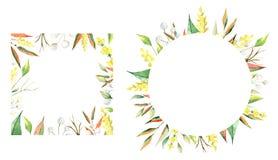 Akwareli ramy jesień Liście, branchs i kwiaty, obraz royalty free