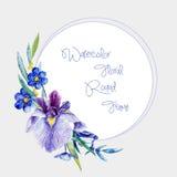 Akwareli round rama błękitni irysy i inny kwitnie ilustracja wektor