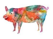 Akwareli rysunkowa świnia dla nowego roku ilustracji