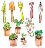 Akwareli seedle i ogrodowi narzędzia Obrazy Royalty Free