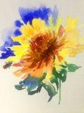 Akwareli sztuki tła kwiatu żółtego światła kwiecistej delikatnej dalii romantyczna ściga royalty ilustracja