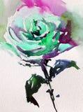 Akwareli sztuki tła kwiatu abstrakcjonistycznej kwiecistej róży biały mokry obmycie zamazywał fantazję Obraz Stock