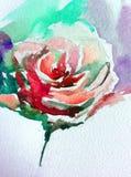 Akwareli sztuki tła kwiatu abstrakcjonistycznej kwiecistej róży biały mokry obmycie zamazywał fantazję Obrazy Stock