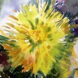Akwareli sztuki tła kwiatu abstrakcjonistycznej pięknej kwiecistej dalii romantyczny nawierzchniowy kolorowy textured mokry obmyc Obrazy Stock