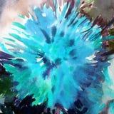 Akwareli sztuki tła kwiatu abstrakcjonistycznej pięknej kwiecistej dalii romantyczny nawierzchniowy kolorowy textured mokry obmyc Zdjęcia Royalty Free
