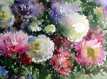 Akwareli sztuki tła kwiatu asteru bielu abstrakcjonistycznych kwiecistych menchii fiołkowy mokry obmycie zamazywał fantazję Zdjęcia Royalty Free