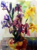 Akwareli sztuki tła kwiatu bukieta kolorowy irys w wazowym mokrym obmyciu zamazującym Obrazy Stock