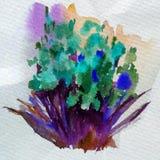 Akwareli tła kwiatów abstrakcjonistycznego kwiecistego bukieta dekoraci ręki przelewu kleksa jaskrawa zamazana textured piękna ta Zdjęcie Royalty Free