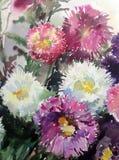 Akwareli tła kwiatów abstrakcjonistycznego kwiecistego deseniowego asteru mokry obmycie zamazywał dekoraci ręki pięknego wallpape Zdjęcia Royalty Free