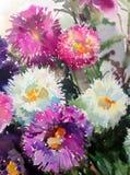 Akwareli tła kwiatów abstrakcjonistycznego kwiecistego deseniowego asteru mokry obmycie zamazywał dekoraci ręki pięknego wallpape Obrazy Royalty Free