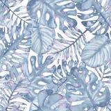 Akwareli tropikalna bezszwowa deseniowa ręka malował z liśćmi indygowy palmowy monstera Zdjęcie Royalty Free