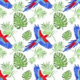 Akwareli tropikalna deseniowa papuzia ara opuszcza monstera i palmy royalty ilustracja