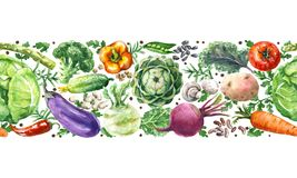 Akwareli warzyw Horyzontalny Bezszwowy wzór royalty ilustracja