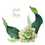 Akwareli wektorowej zielonej karty tropikalni liście i kwiaty odizolowywający na białym tle zdjęcie royalty free