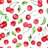 Akwareli wiśni owocowy bezszwowy wzór Zdjęcie Royalty Free
